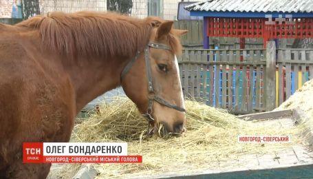 Дитячий садочок Новгорода-Сіверського шукає власника для коня