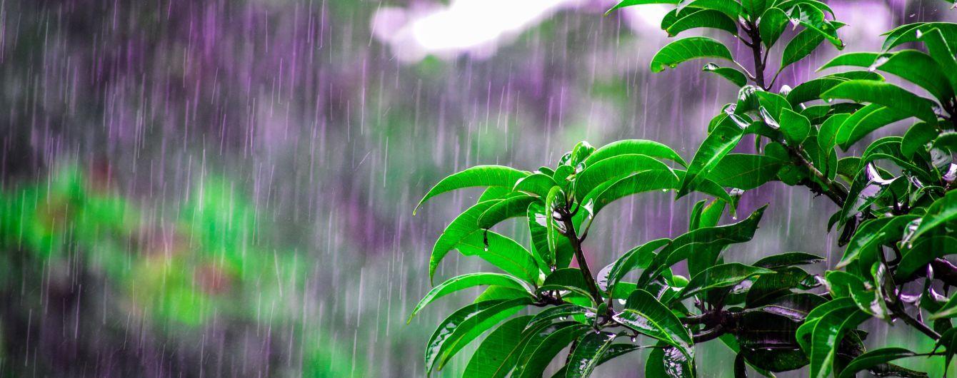 У неділю в Україні дощитиме, проте потеплішає. Прогноз погоди на 12 травня