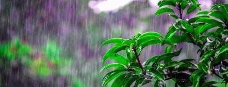Погода на понедельник: на западе Украины будут дожди и грозы