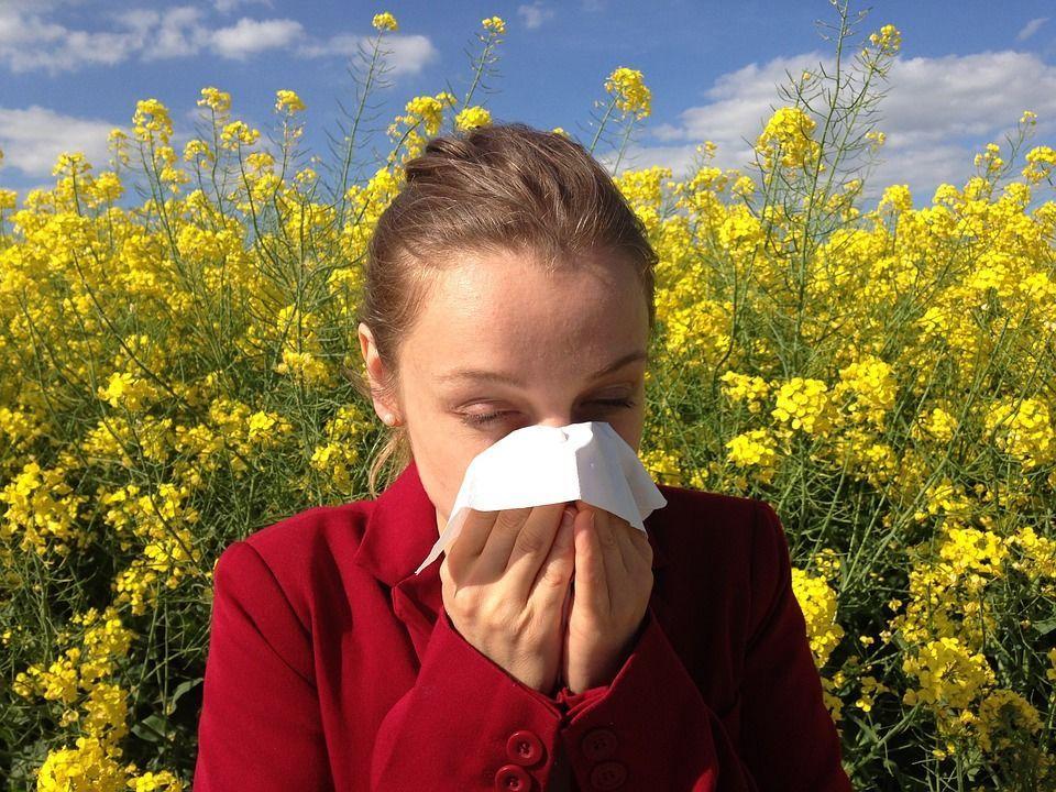 Алергія, для блогія