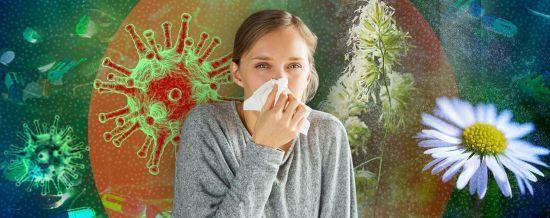 Алергія: головне про хворобу XXI століття