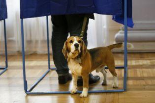 Понад 18% голосів за три години. ЦВК опублікувала явку у другому турі виборів президента