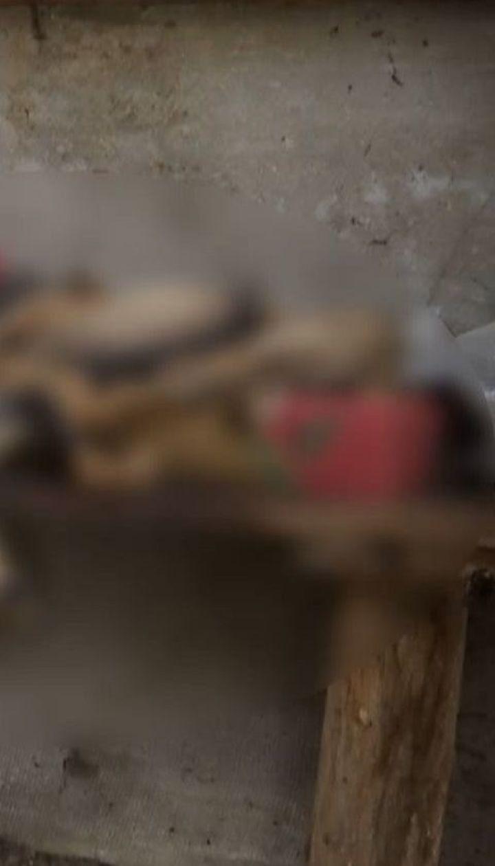 Измученных собак и котенка нашли в сельском доме в Ровенской области
