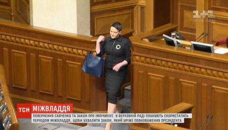 Період міжвладдя: ВР планує скоротити обов'язки президента