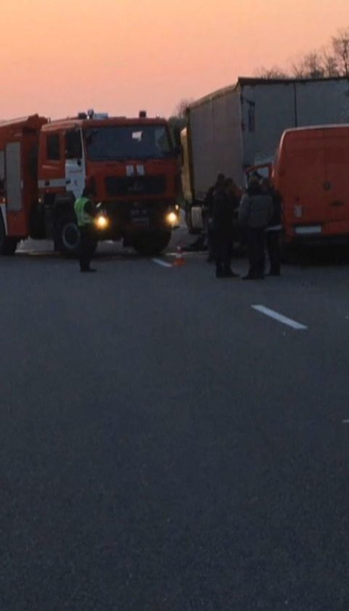 Вследствие двойной аварии на трассе Киев-Чоп погибли мужчина и лось