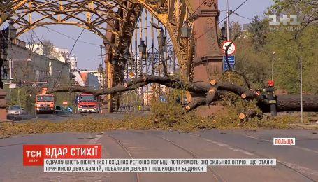 Поваленные деревья и сорваные крыши: Польша страдает от мощной непогоды
