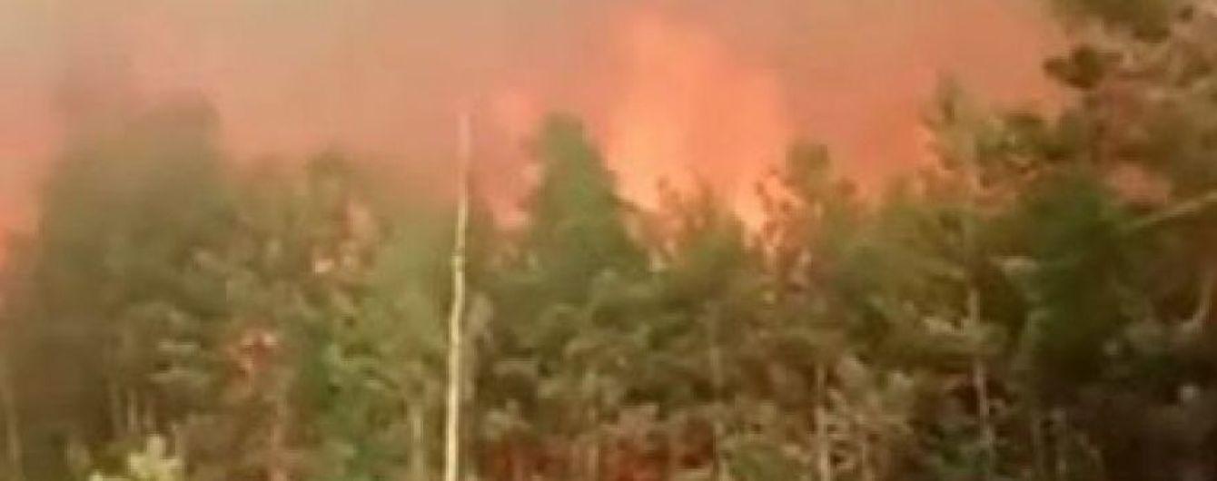 Рятувальники чатують на кордоні з Білоруссю через лісову пожежу, яка рухається до України
