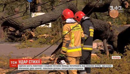Сразу шесть регионов Польши страдаю от сильных ветров