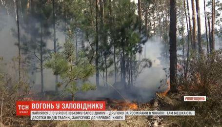 Пожарные дежурят неподалеку Ровенского природного заповедника, который спасали весь день