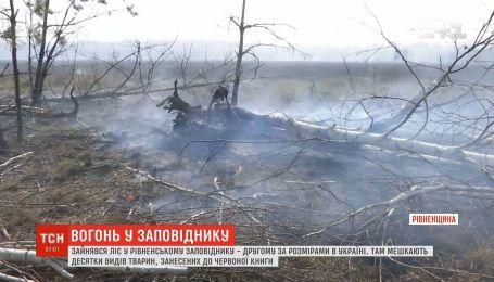 Десятки спасателей всю ночь дежурили неподалеку Ровенского природного заповедника
