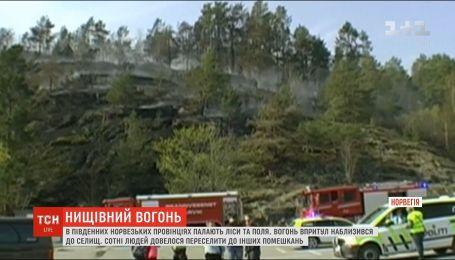 Норвегія потерпає від масштабних лісових пожеж