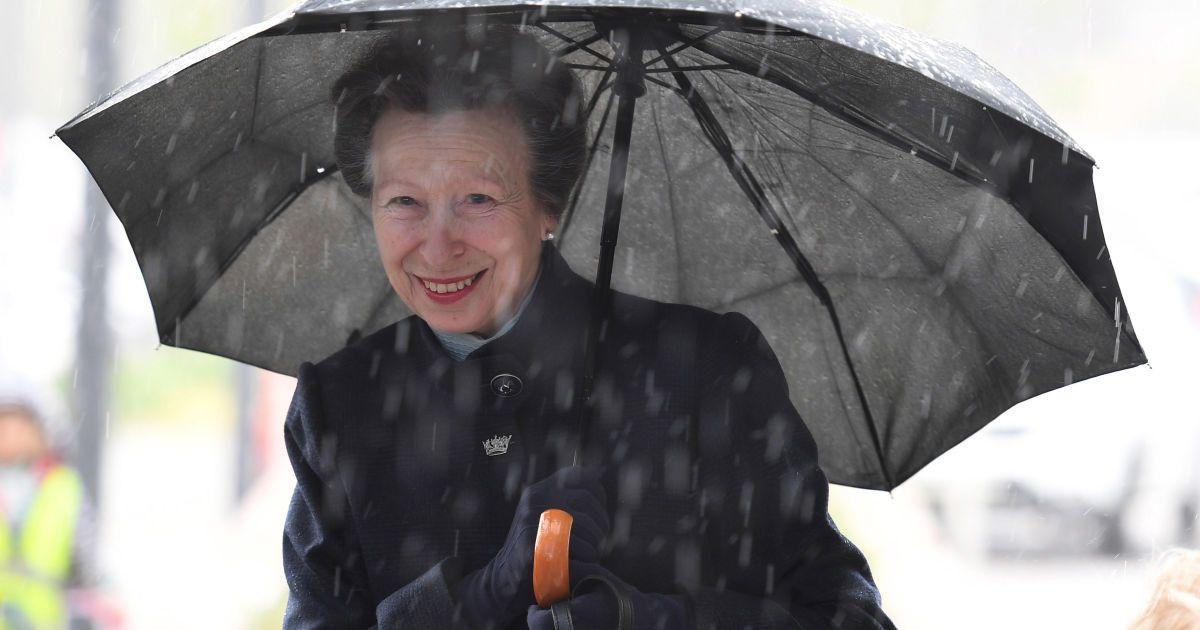 Під дощем, але усміхається: принцеса Анна на новому заході