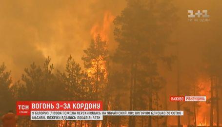 Масштабна пожежа з Білорусі перекинулася на ліси Рівненщини