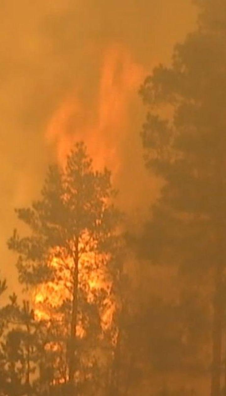 Масштабный пожар из Беларуси перекинулся на леса Ровенской области
