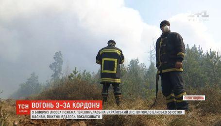 Пожежу, яка перекинулася з Білорусі на ліси Рівненщини, вдалося локалізувати