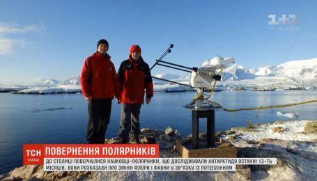 Зазеленевшая Антарктида и новые виды растений: украинские полярники отчитались о своих достижениях