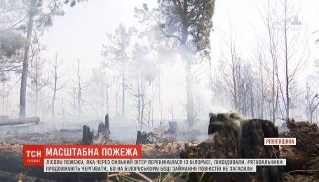 На Рівненщині загасили масштабну пожежу, що перекинулася з Білорусі