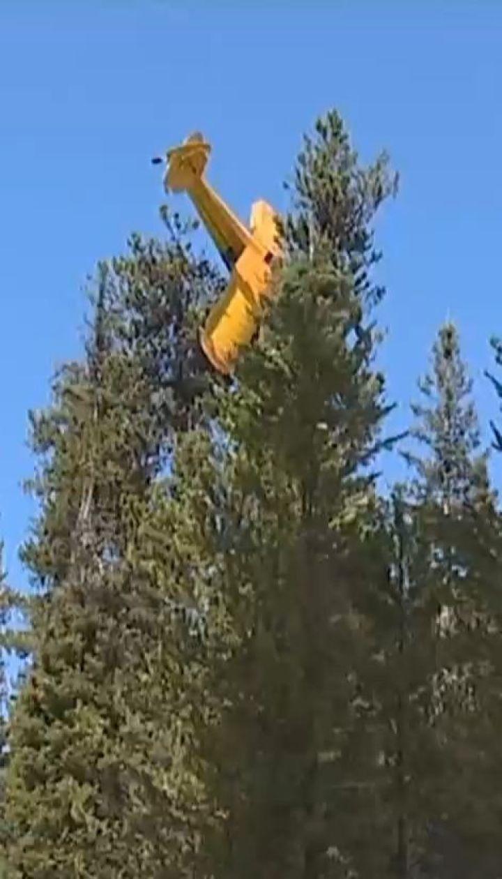 В американському штаті Айдахо легкомоторний літак застряг на дереві