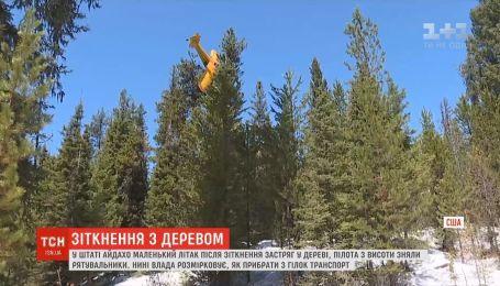 В американском штате Айдахо легкомоторный самолет застрял на дереве