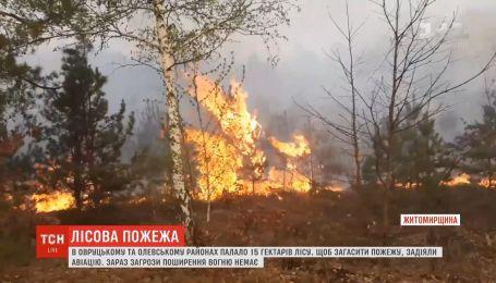 Масштабну лісову пожежу гасили на Житомирщині