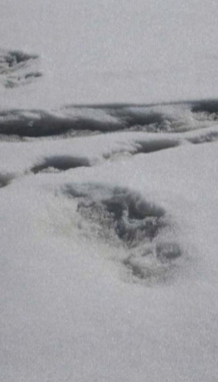 У Гімалайських горах знайшли відбиток ноги снігової людини
