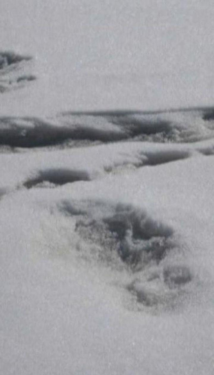 В Гималайских горах нашли отпечаток ноги снежного человека
