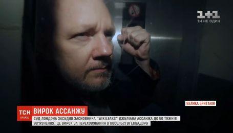 Лондонский суд приговорил Ассанжа к 50 неделям заключения