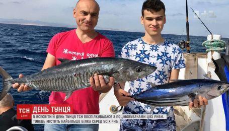 Во Всемирный день тунца ТСН пообщалась с ценителями этой рыбы