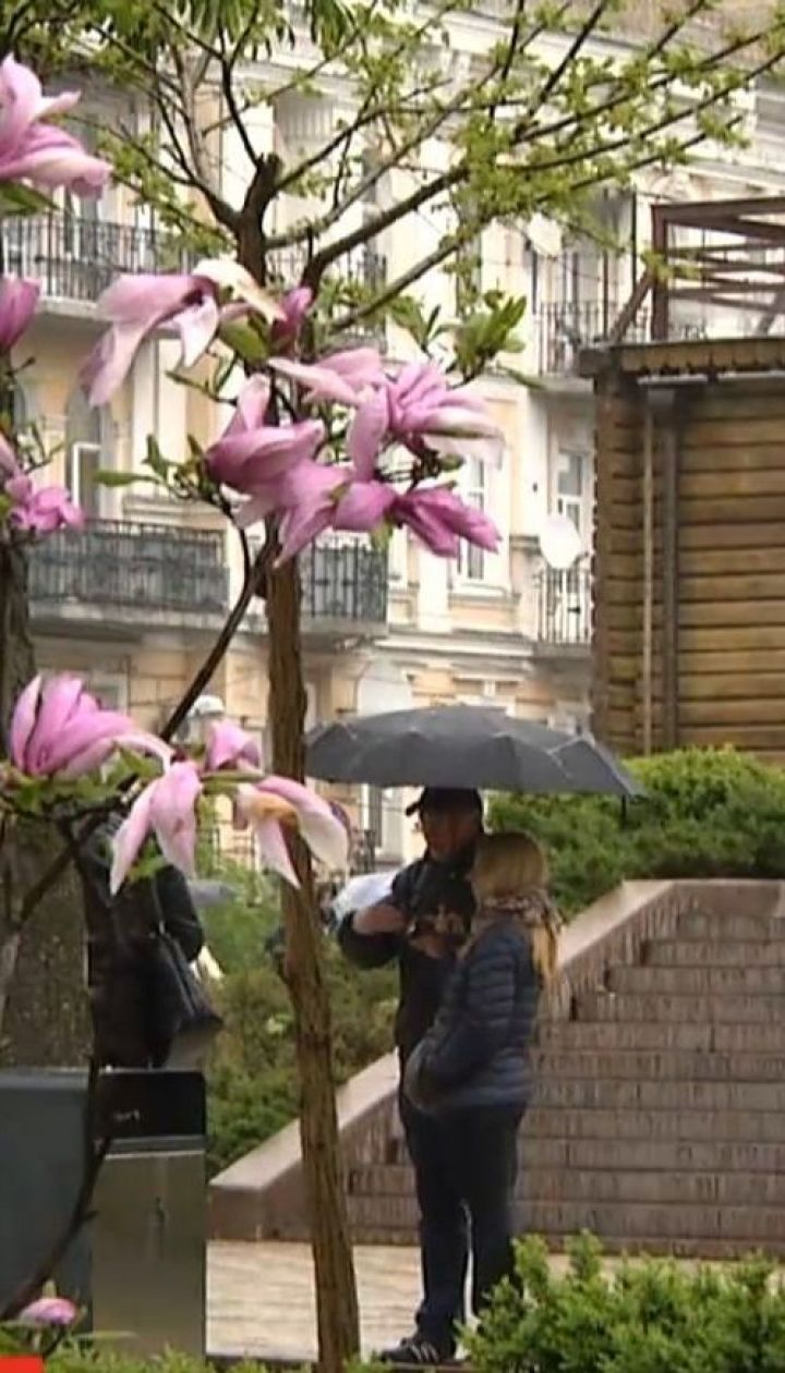 Со следующей недели в Украине похолодает и задождит