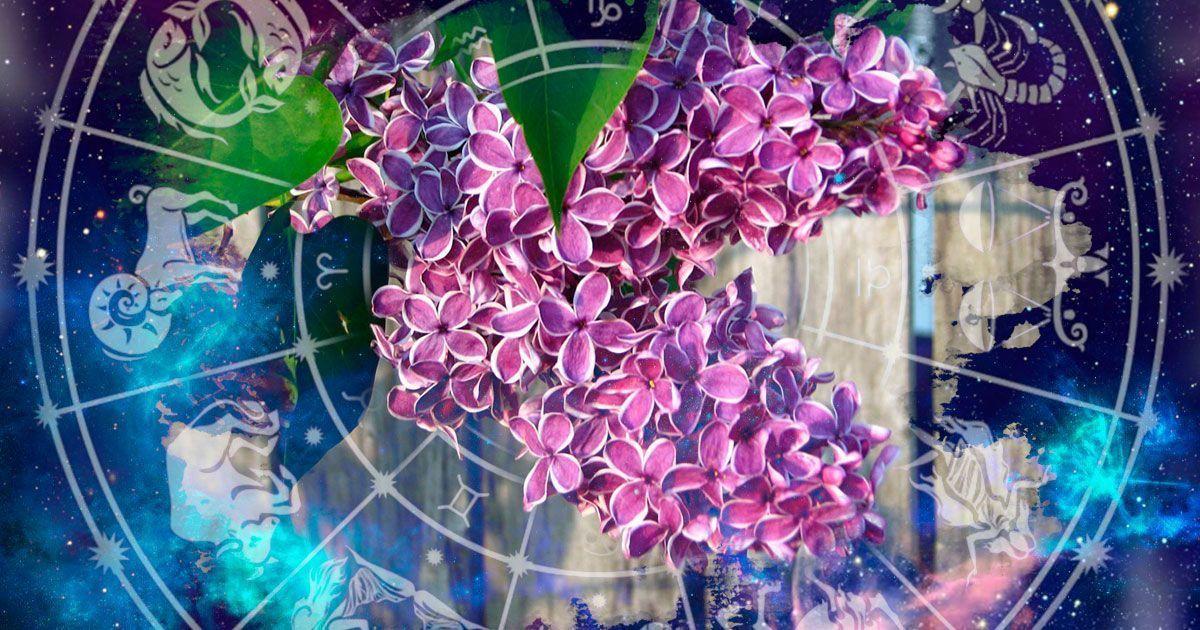 Что звезды нам пророчат: астропрогноз на 6-12 мая
