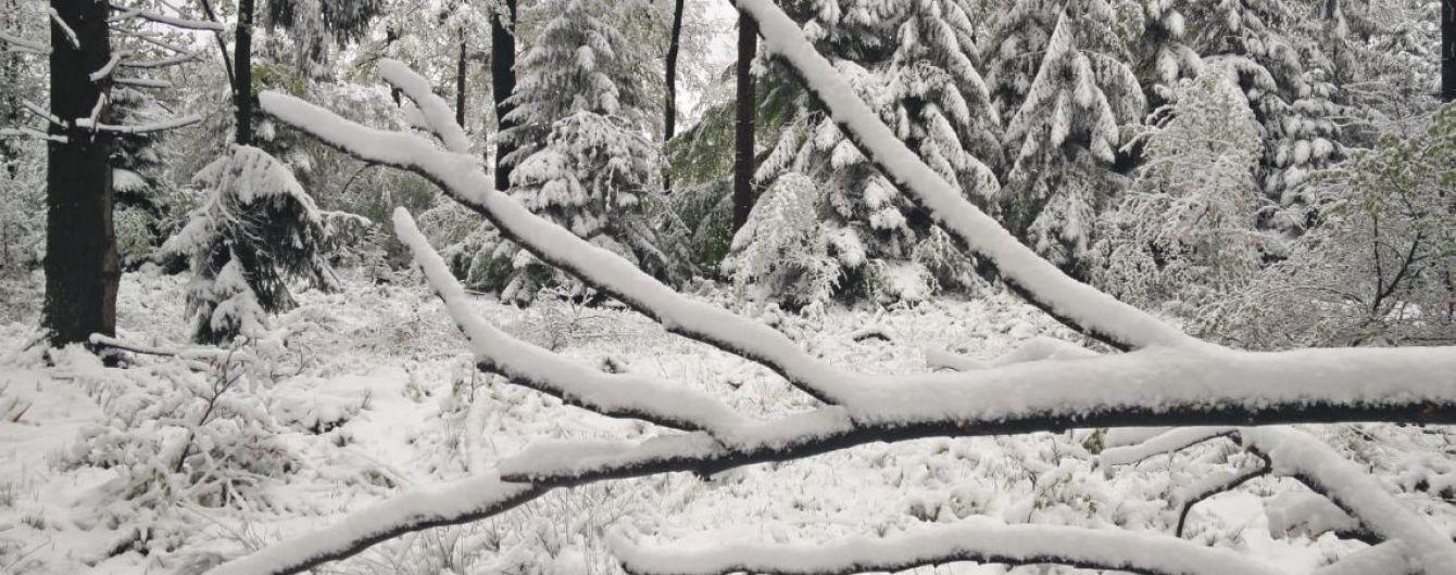 Південь Бельгії накрив снігопад