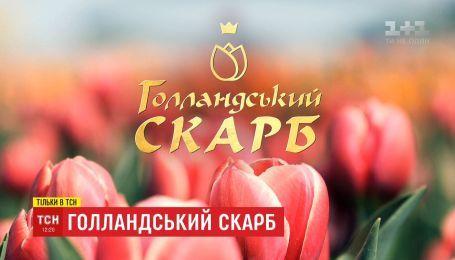 "ТСН покаже спецпроект ""Голландський скарб"""