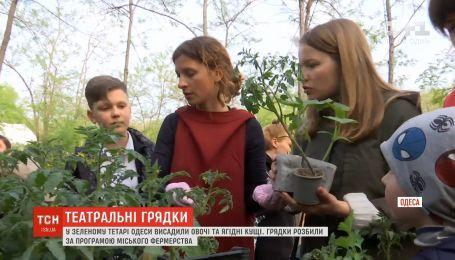 Одесситы в Зеленом театре высадили рассаду по программе городского фермерства