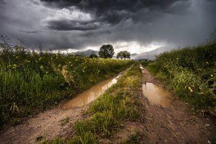 Погода на 4 червня: в Україні очікують грози, шквали і спеку