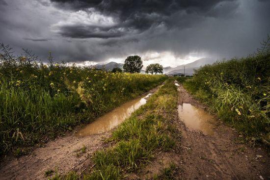 Погода на суботу: в Україні будуть грози та шквали