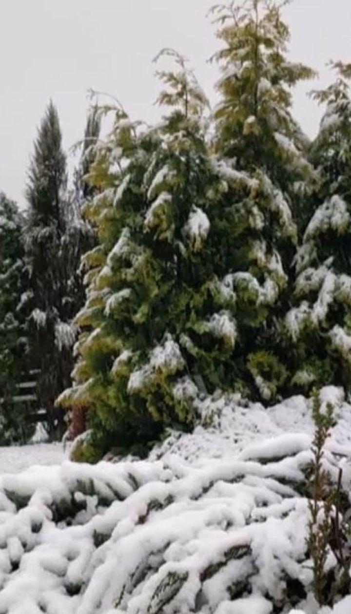 Водіїв і туристів у Карпатах закликають бути обережними через погодну аномалію