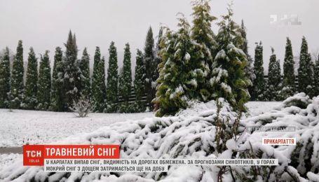 Водителей и туристов в Карпатах призывают быть осторожными из-за погодной аномалии