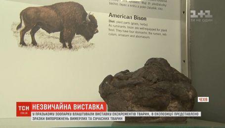 Виставку екскрементів тварин відкрили у празькому зоопарку