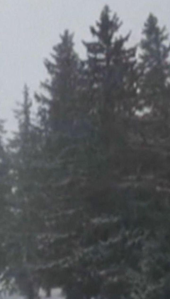 4-летний ребенок исчез в Румынии вследствие непогоды