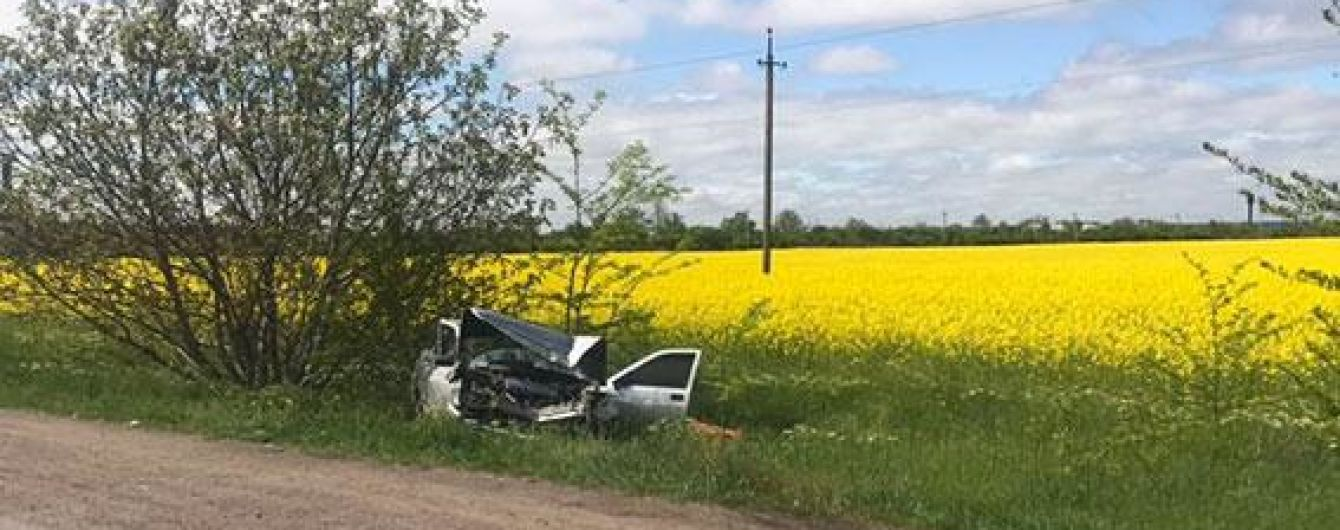 В Николаевской области легковушка врезалась в грузовик, погибли супруги пенсионеры