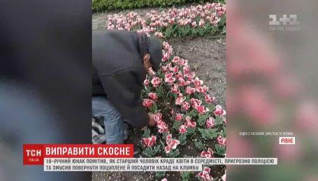 Юноша заставил мужчину сажать украденные тюльпаны в центре Ровно