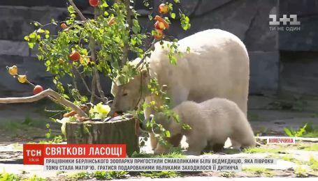 Працівники берлінського зоопарку пригостили смаколиками білу ведмедицю