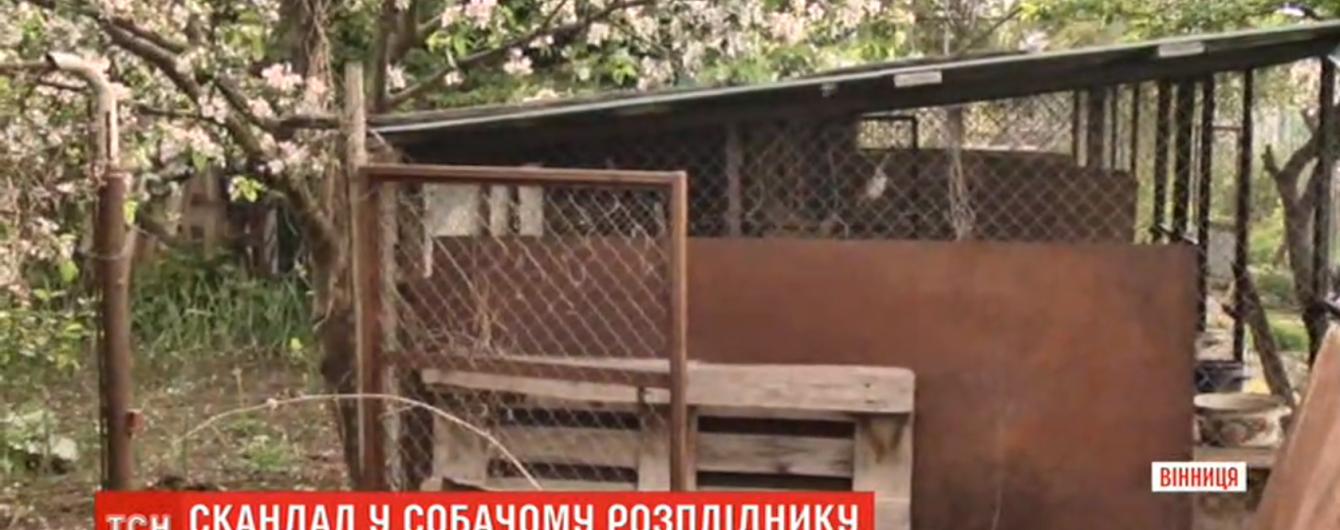 У Вінниці у розпліднику виявили тіла мертвих собак: сусіди скаржаться на сморід