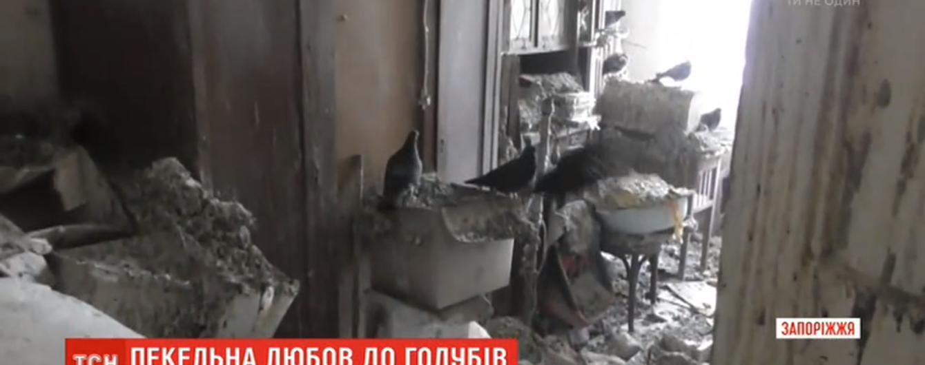 Помет на мебели, полу и посуде: запорожская пенсионерка превратила квартиру в голубятню