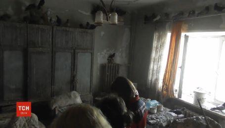 В Запорожье пенсионерка превратила свою квартиру в голубятню