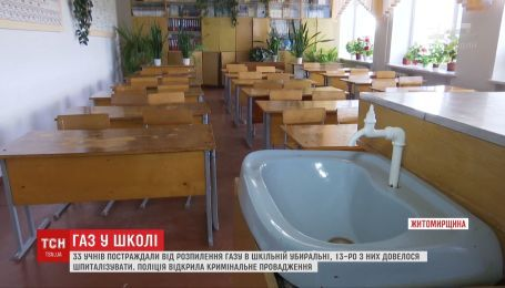 Ученику, который распылил газовый баллончик в гимназии Коростышева, грозит наказание
