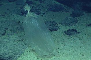 В Марианской впадине дайвер погрузился на рекордную глубину. Там его ждало печальное открытие
