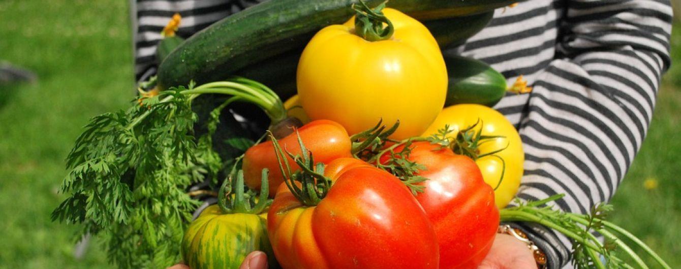 """Цены на овощи """"кусаются"""": где в Украине самые дорогие помидоры и когда подешевеют огурцы"""