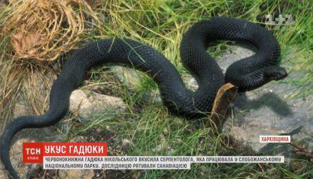 На Харьковщине 33-летняя серпентолог оказалась в больнице из-за укуса гадюки