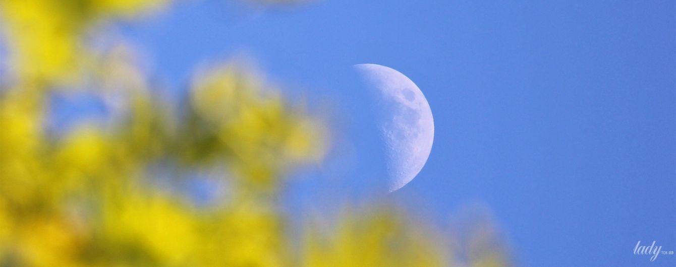 Місячний календар на 1-2 серпня: дні, коли стрижка додасть волоссю здоров'я